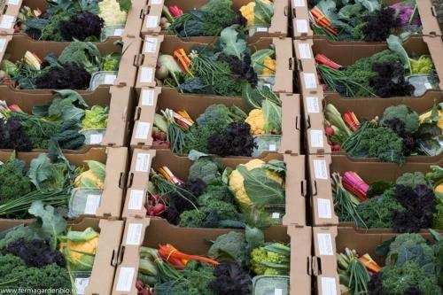 1800 coșuri cu legume livrate în 2019