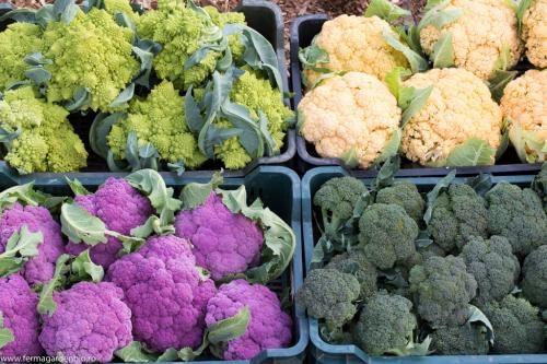 Broccoli și conopidă