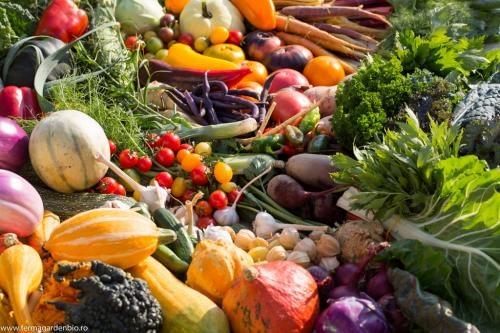 Recoltă de legume și fructe