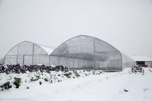 Solar multitunel finalizat înainte de prima zăpadă