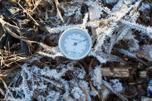 Temperatura din grămada de compost ajunge la 60 °C, chiar dacă afară este sub 0 °C